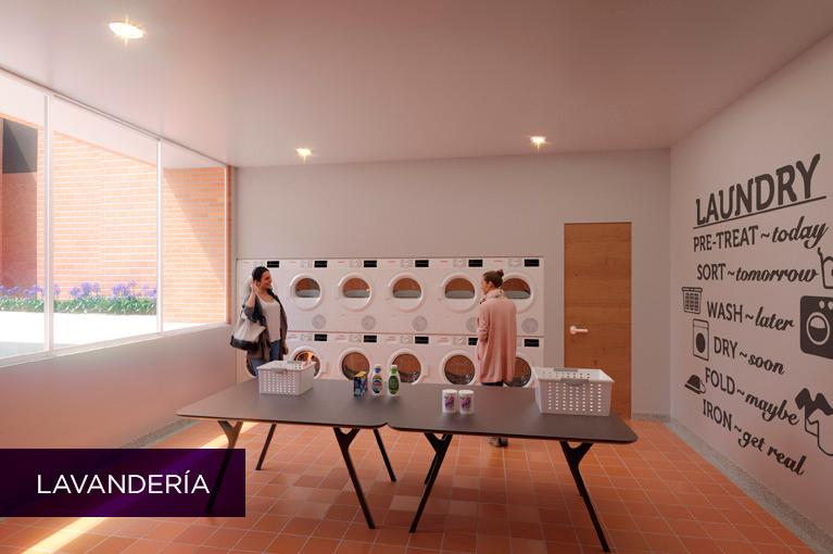 Lavanderia-VerbenaMiniatura767x510